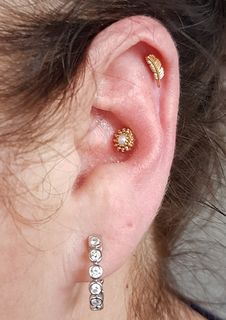 conch & helix