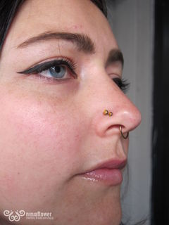 18 gauge double nostril