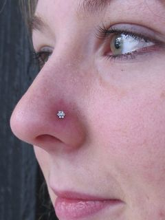 18 gauge nostril