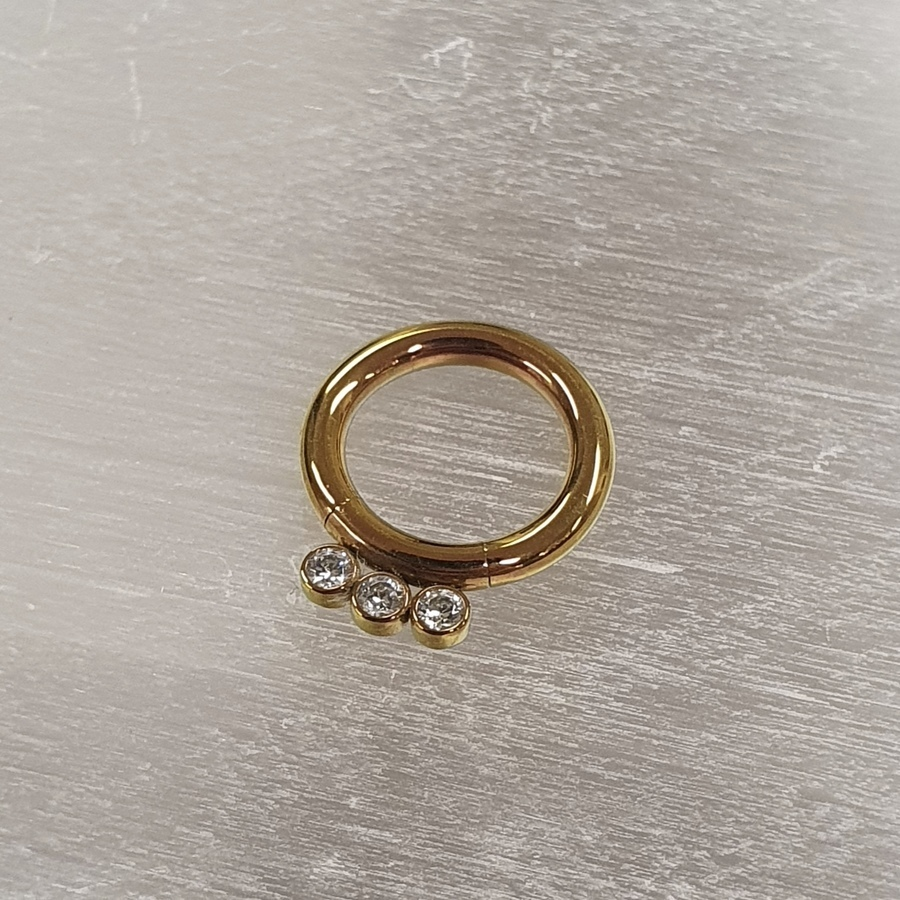 2mm Segment ring with gems