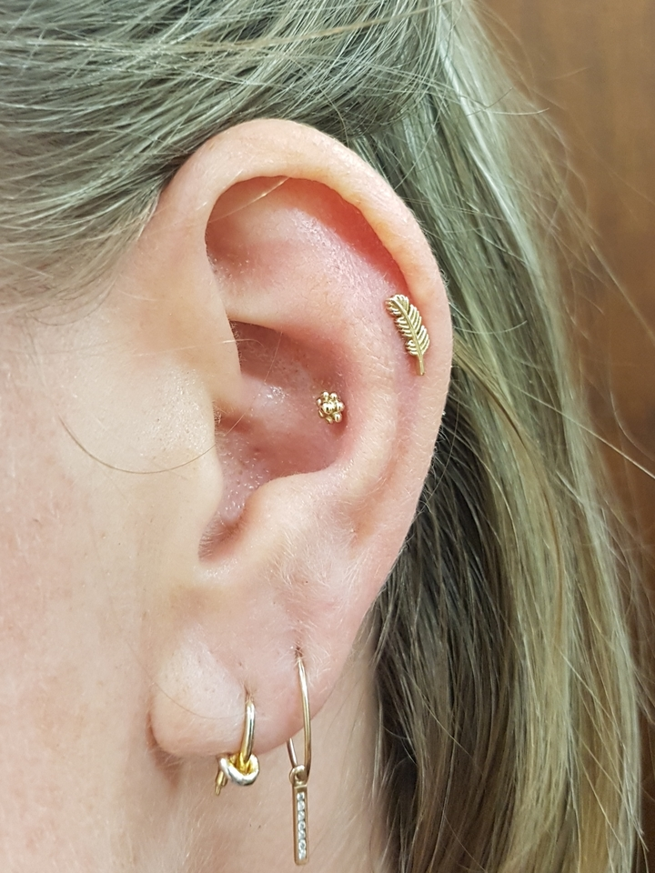 low helix & conch