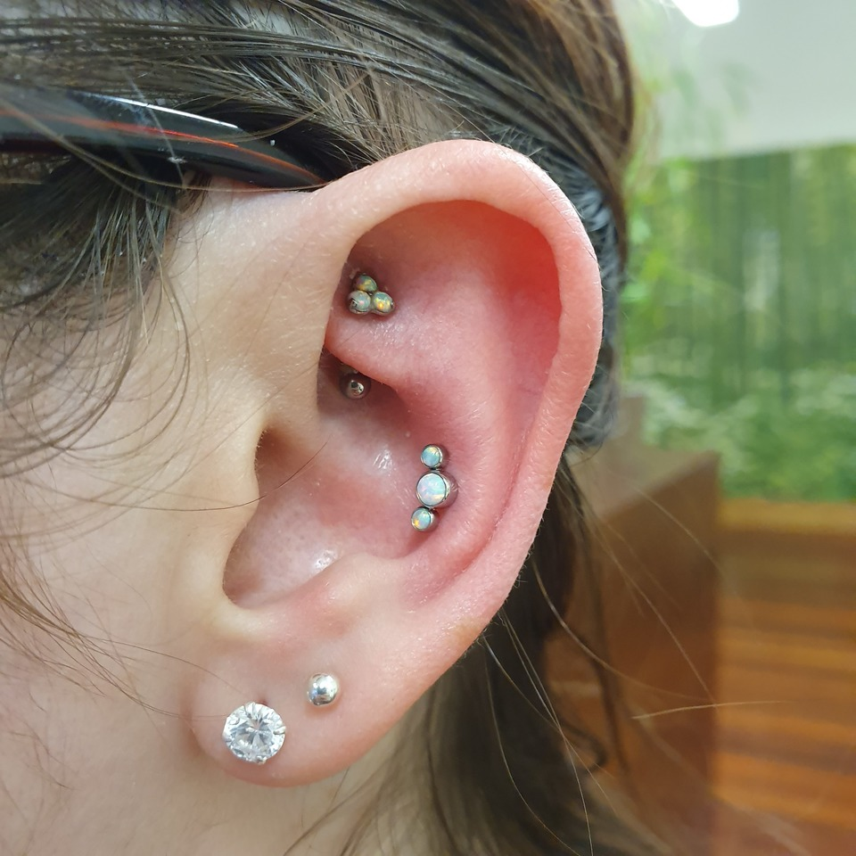 rook & conch